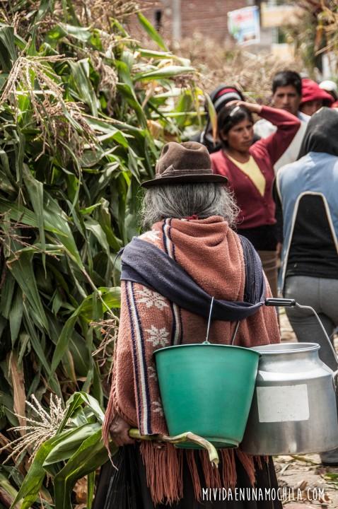 mercado de hierbas riobamba