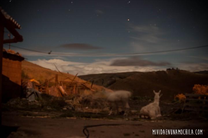 llamas casa quemada comunidad sierras ecuador