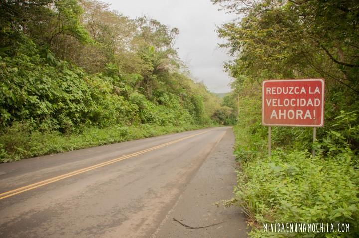 cartel bosque humedo pacocha ecuador