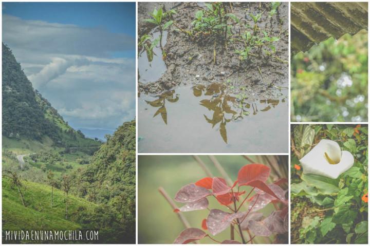 collage fotos sierra ecuador