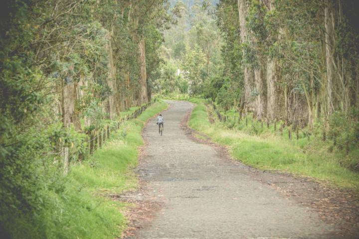 hacienda zuleta ecuador (21)